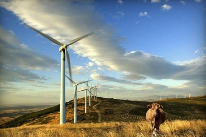 Uruguay alcanza ser el país con mayor uso de energía eólica de latinoamérica