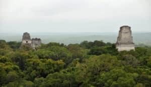 03.Tikal-canopy