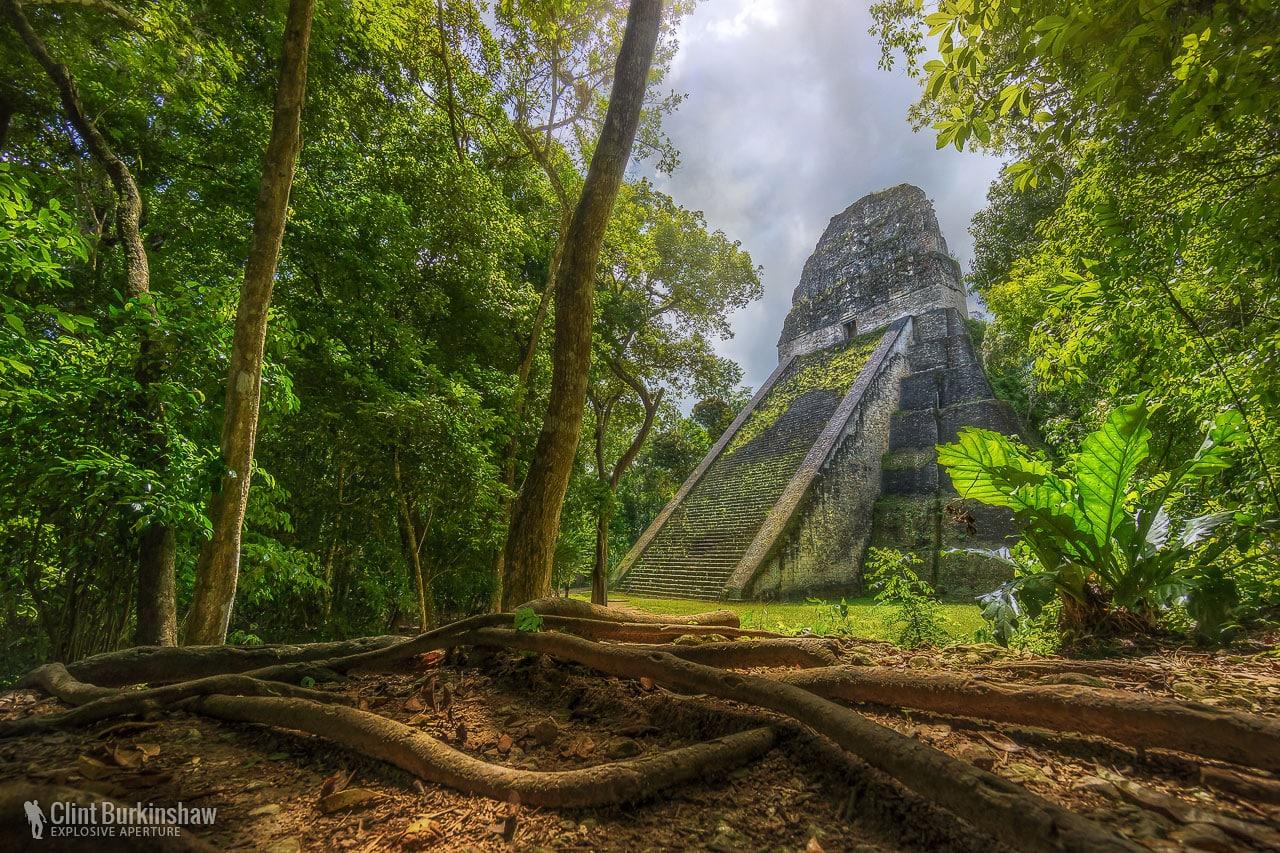 Recorriendo latinoamérica: Tikal, corazón Maya en Guatemala