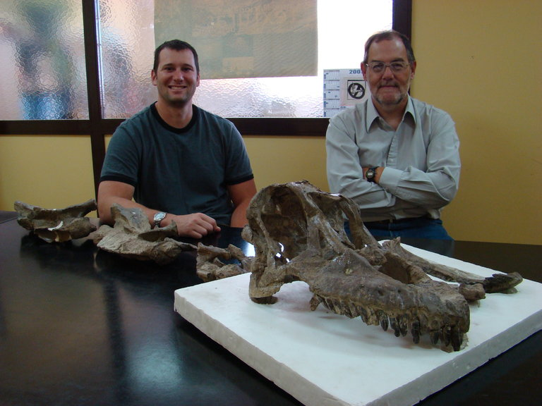 Descubren un nuevo dinosaurio en patagonia argentina: