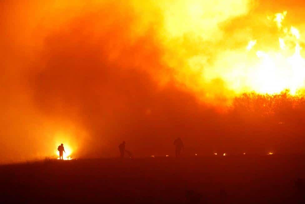 Expertos señalan que incendios forestales de Chile son de los peores de la historia de la humanidad
