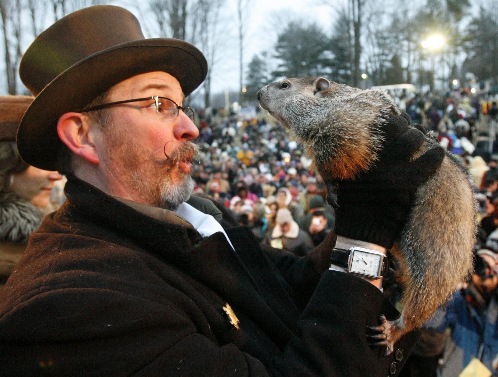 La tradicional Marmota augura una pronta primavera en Canadá