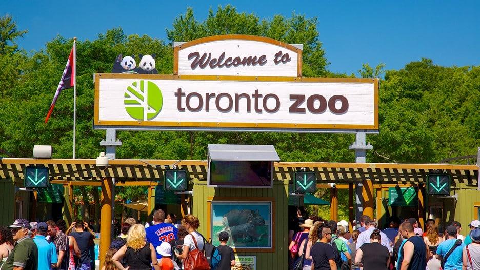 Zoológico de Toronto cierra sus puertas