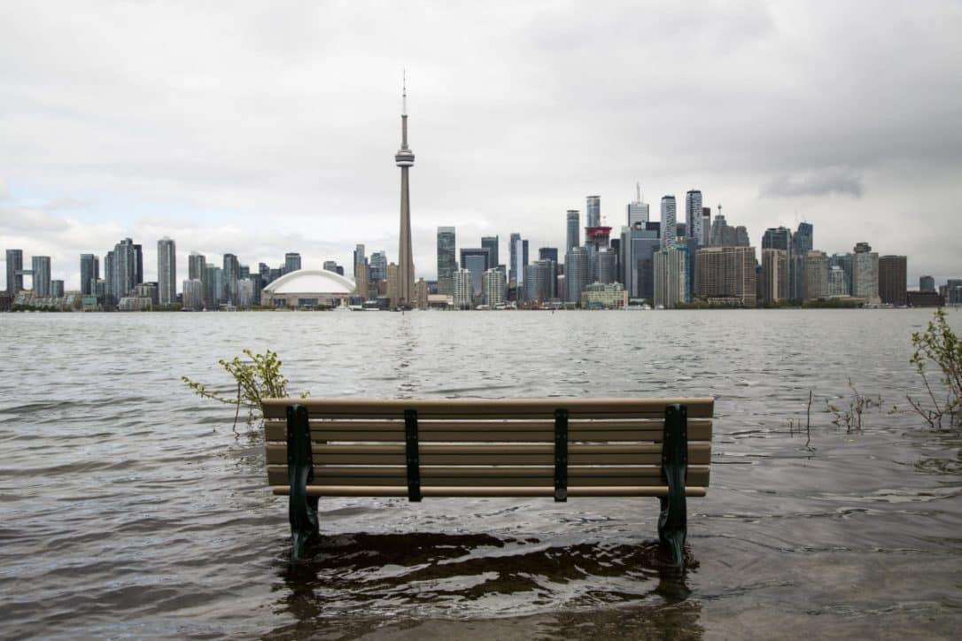 Encuentran mosquitos con el denominado virus del Nilo Oeste en la Isla de Toronto