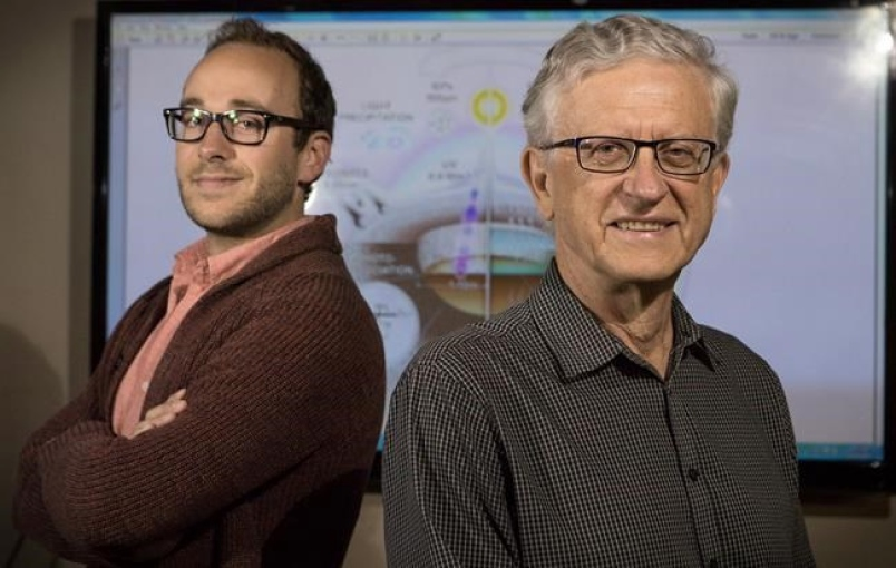 Vida en la Tierra comenzó en pequeño charco, sostienen científicos canadienses