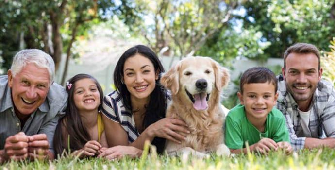 El 95% de los latinoamericanos consideran a sus perros como