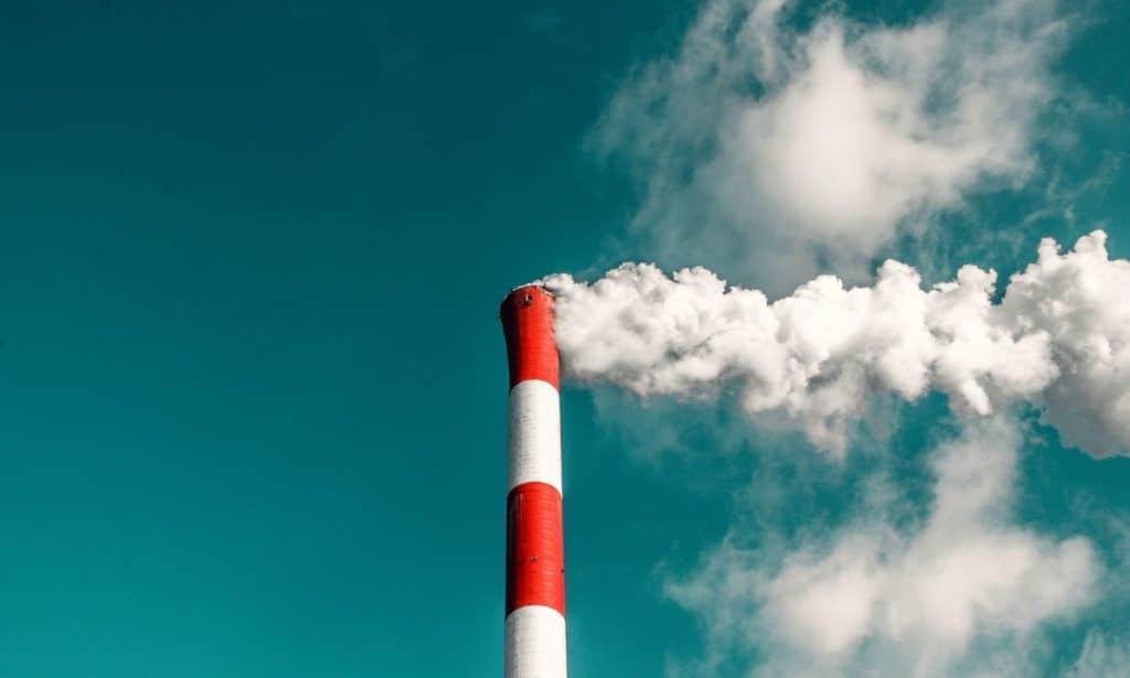 ¿Cómo afecta la pandemia al medio ambiente?